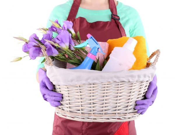 woman wearing apron and holding a basket of cleaning supplies with purple irises
