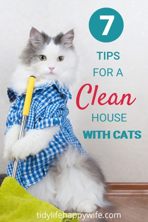 Cat holding microfiber mop to keep your house clean with cats