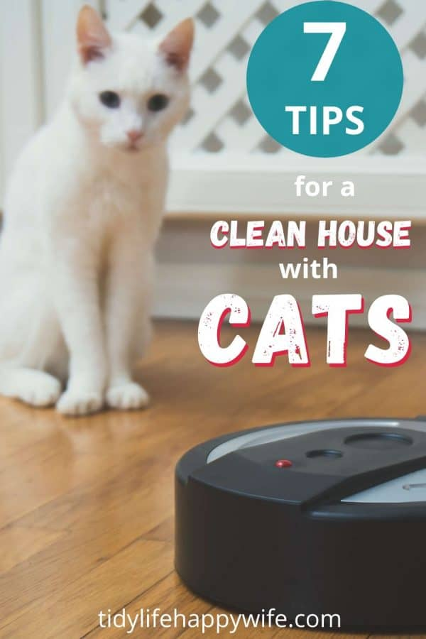 Robot vacuum cleaning a house with cats