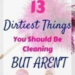 Duster and Cleaners