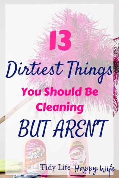 Feather duster and cleaning supplies for the dirties things you should be cleaning but aren't