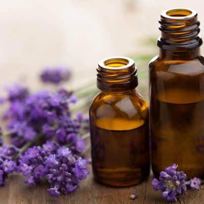 Lavender and 2 bottles of lavender oil