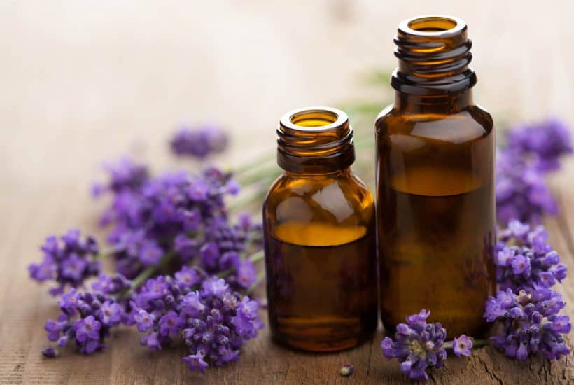Lavender and 2 bottles of lavender oil