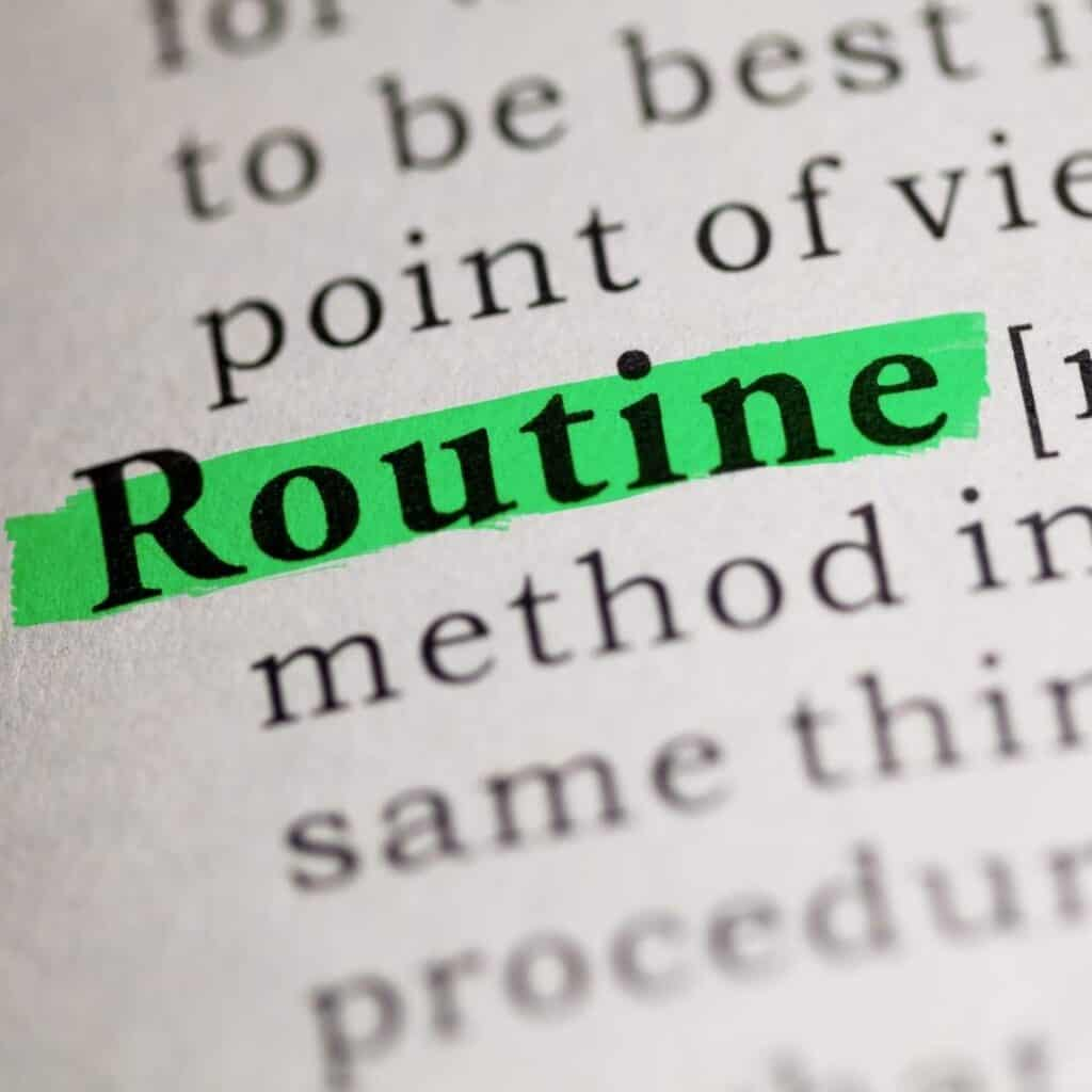 the word routine in a dictionary